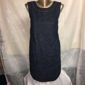 Vintage Astrosatchel denim dress